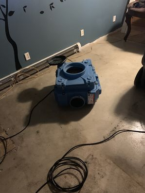 Mold Remediation in New Canaan, CT (1)