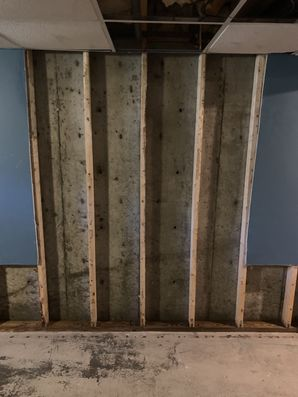 Mold Remediation in New Canaan, CT (2)