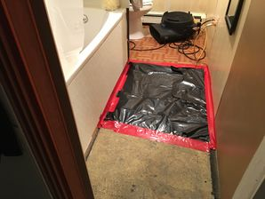 Mold Removal in Stamford, CT (2)